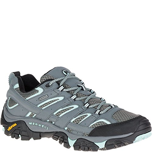 Merrell Women's Moab 2 Gtx Hiking Shoe, Sedona Sage, 8.5 M US (Merrell Moab Gore Tex Waterproof Walking Shoes)