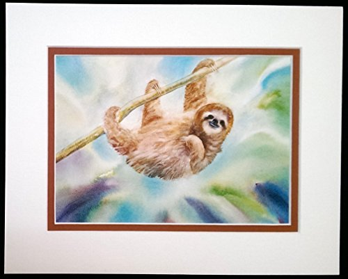 8X10 Matted Print, Three Toed Sloth -