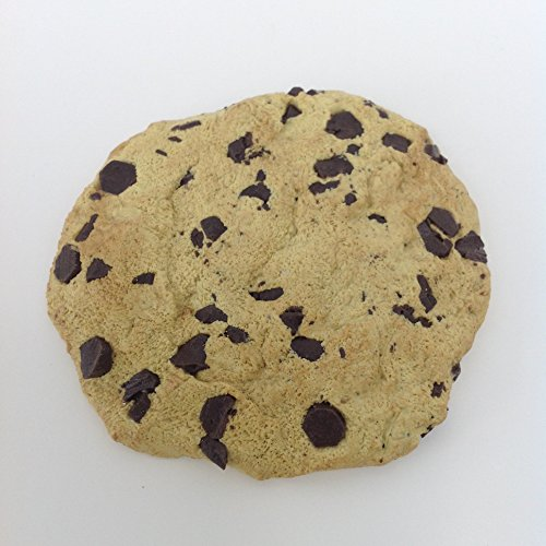 Cookie Food Fake (Chocolate Chip Cookie Magnet)