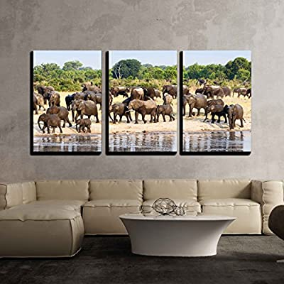 Dazzling Artistry, With Expert Quality, a Herd of African Elephants Drinking at a Muddy Waterhole Hwange National Park Zimbabwe x3 Panels