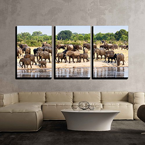 vas Wall Art - a Herd of African Elephants Drinking at a Muddy Waterhole, Hwange National Park, Zimbabwe - Modern Home Decor Stretched and Framed Ready to Hang - 24