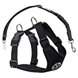 Nasus Dog Car Harness Plus Connector Strap, Adjustable Double Breathable Mesh Fabric Travel Regular Vest Harness with Safety Seat Belt in Cars Vehicle for Dogs Road Trip Daily Walks,Black Small