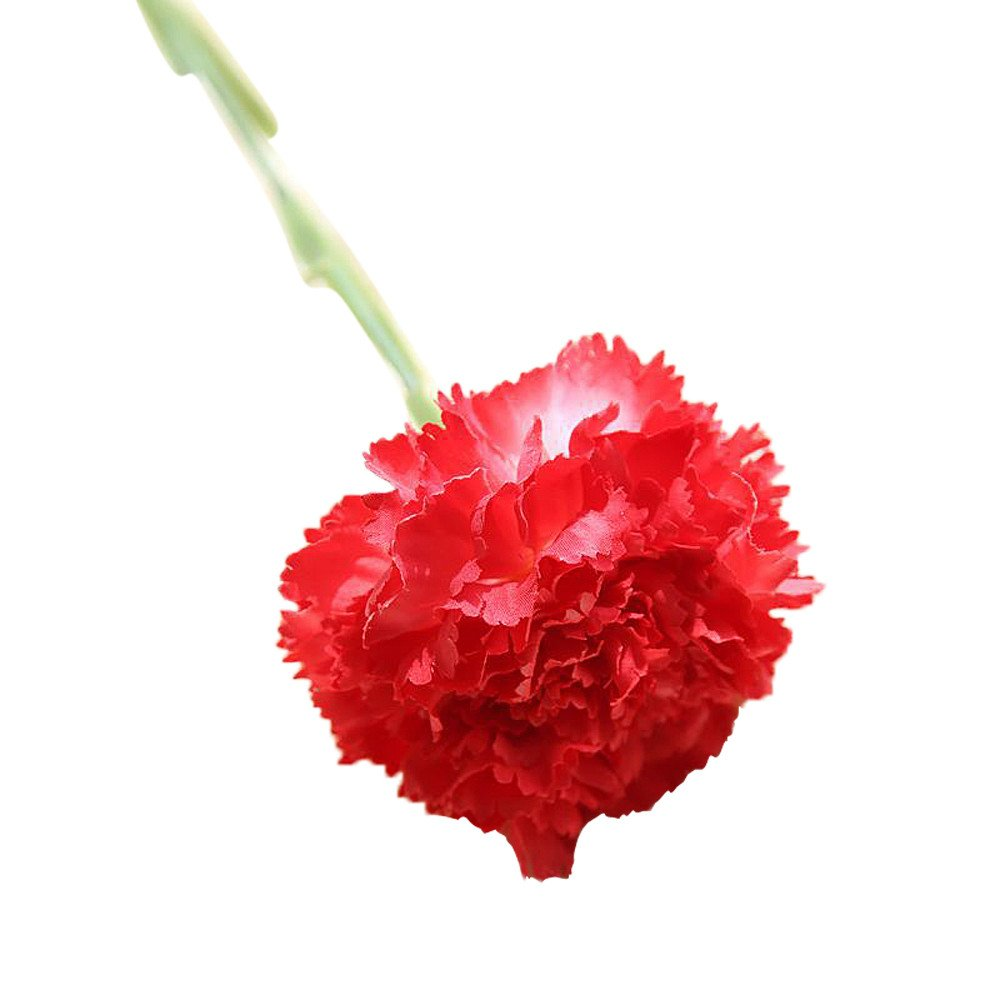 Snowfoller Artificial Fake Flowers Carnations Floral Wedding Bouquet Party Home Decoration (Red)