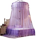 Mosquito Net Cover, Princess Round Lace Mosquito Nets,Conical Curtains Fly Screen Netting Bug Screen Repellant-Carrying Malaria & Diseases for Home or Travel Use (Purple)