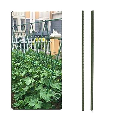 Huilier 60cm Garden Plant Support Stakes Climbing Stand Flower Stick Cane Gardening Tool : Garden & Outdoor