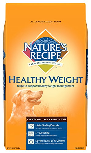 weight loss food for dogs - 4