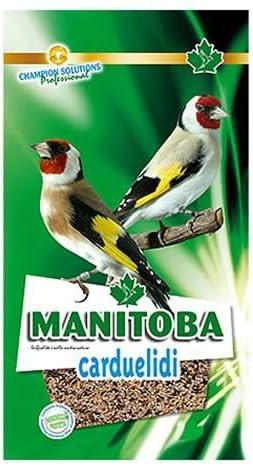 Manitoba - Mixtura Jilgueros Carduelidi, 2.5KG: Amazon.es ...