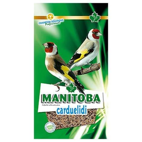 Manitoba – Mixtura Jilgueros Carduelidi, 2.5KG