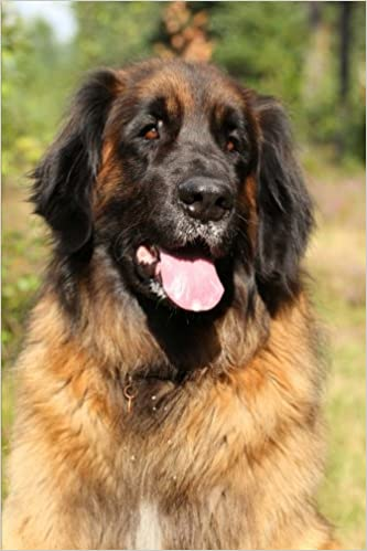 Book The Leonberger Dog Journal: 150 page lined notebook/diary