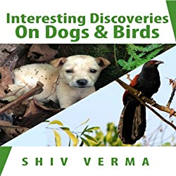 Interesting Discoveries on Dogs & Birds