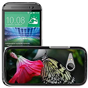 Hot Style Cell Phone PC Hard Case Cover // M00112333 Papilio Machaon Butterfly Animal // HTC One Mini 2 / M8 MINI / (Not Fits M8)