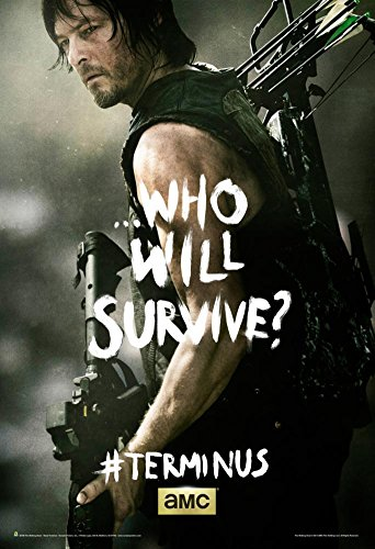 Price comparison product image The Walking Dead - Terminus Daryl Poster 24 x 36in