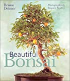 img - for Beautiful Bonsai by Bruno Delmer (2002-05-01) book / textbook / text book