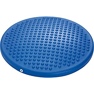 GYMNIC Disc'o'Sit Wobble Cushion - Stability & Strengthening Training - Improve Sitting Posture 21