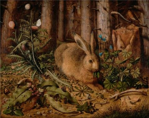 Oil Painting 'A Hare In The Forest,c. 1585 By Hans Hoffmann' Printing On Perfect Effect Canvas , 20x25 Inch / 51x64 Cm ,the Best Powder Room Gallery Art And Home Decor And Gifts Is This Vivid Art Decorative Prints On Canvas