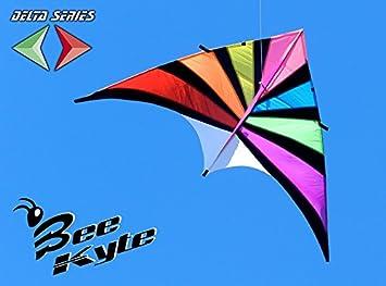 Bee Kite Rainbow - Cometa monocable Vuelo a vela 270 x 140 cm ...