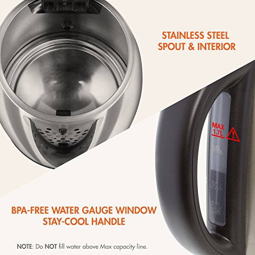 Tenergy Stainless Kettle 1.7L Fast Boiling Cordless Electric Water with Dry Light Indicator