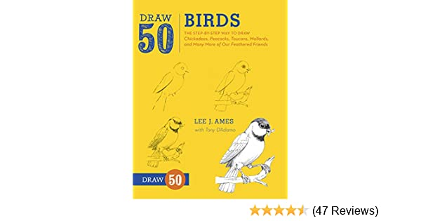 Amazon draw 50 birds the step by step way to draw chickadees amazon draw 50 birds the step by step way to draw chickadees peacocks toucans mallards and many more of our feathered friends ebook lee j ames fandeluxe Gallery