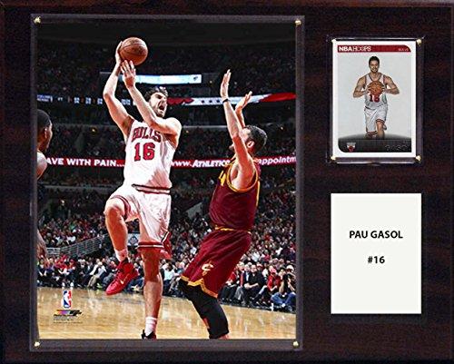 NBA Chicago Bulls Pau Gasol Player Plaque, 12 x 15-Inch, Brown