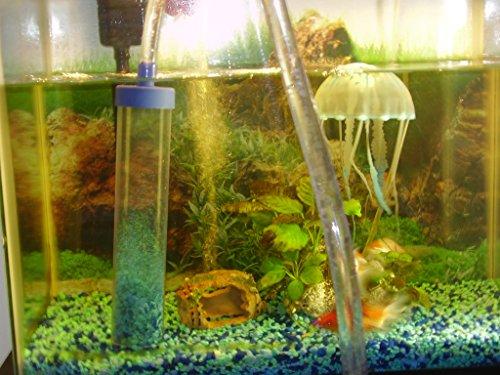 doras-corner-store-2x10-inch-vacuum-water-siphon-with-self-starter-gravel-cleaner-for-aquarium