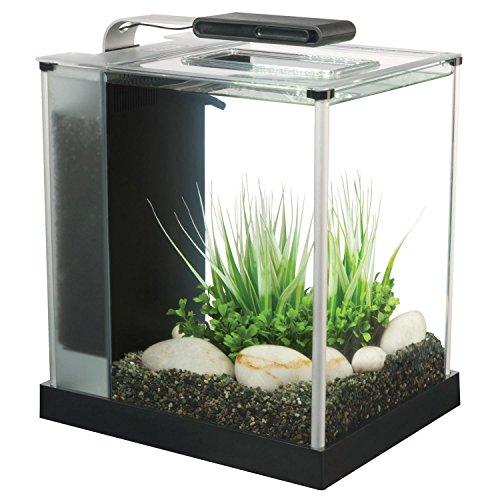 Fluval Spec III Aquarium Kit, 2.6-Gallon, Black 3 Gallon Aquarium