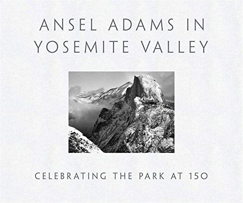 Yosemite Valley - 4