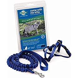 PetSafe Come With Me Kitty Harness and Bungee Leash, Harness for Cats, Medium, Royal Blue/Navy