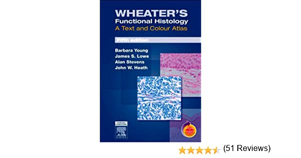 Wheaters functional histology 5e barbara young james s lowe wheaters functional histology 5e barbara young james s lowe john w heath philip j deakin alan stevens 9780808923312 amazon books fandeluxe Gallery