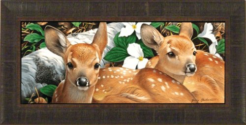 (Full Circle by Jerry Gadamus 14x28 Deer Fawn Wildlife Framed Art Print Wall Décor Picture Signed and Numbered L/E )