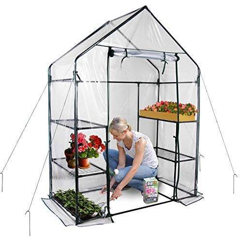 Gosunny Walk in Greenhouse with Clear Cover - 3 Tiers 6 Shelves - Herb and Flower Garden Green House 56