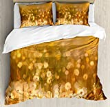 Dandelion Duvet Cover Set Queen Size by Ambesonne, Vintage Flowers in Meadows at Sunset Springtime Oil Painting Style, Decorative 3 Piece Bedding Set with 2 Pillow Shams, Pale Orange Green Brown