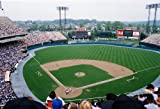 Baltimore Oriole Memorial Stadium 8x10 Photo - Mint Condition