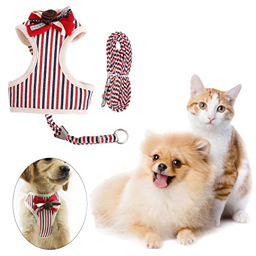 QBLEEV Dog Harness Vest Tie Double-deck Net Cloth Metal Fastener Walking Leash Set Leads Adjustable Breathable Fashion Small Medium Puppies Cat 2 in 1(dog chest harness+leash) (M, Red)