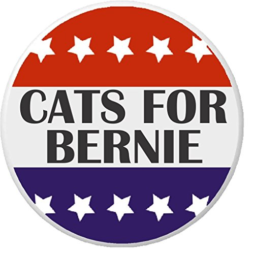 Cats for Bernie