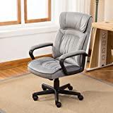 Belleze High Back Gray Microfiber Upholstered Contemporary Executive Office Chair