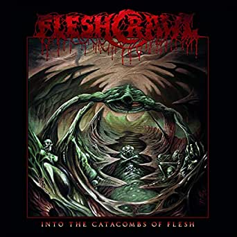 Image result for into the catacombs of flesh