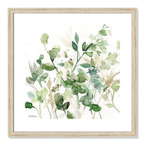 Casa Fine Arts Sage Garden I Green Modern Floral Botanical Archival Watercolor Art Print, 22.5