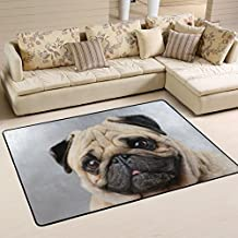 ALAZA Cute Puppy Dog Pug Area Rug Rugs for Living Room Bedroom 3'x2'