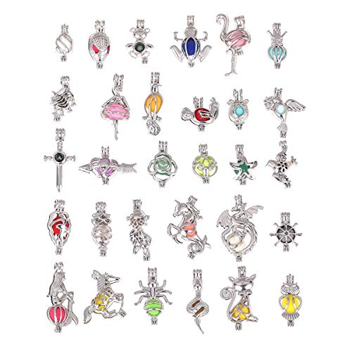 - DLXK 12 Pcs Cute Pearl Bead Cages Pendant Wholesale - Essential Oil Scent Diffuser Cage Charms for Bracelet Necklace Earrings Jewelry Making