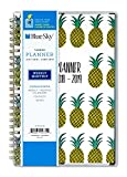 Blue Sky 2018-2019 Academic Year Weekly & Monthly Planner, Flexible Cover, Twin-Wire Binding, 5'' x 8'', Pineapple