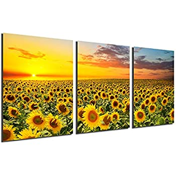 HappyHouseArt 3 Panel Wall Art on Canvas Sunflower Painting for D/écor No Frame