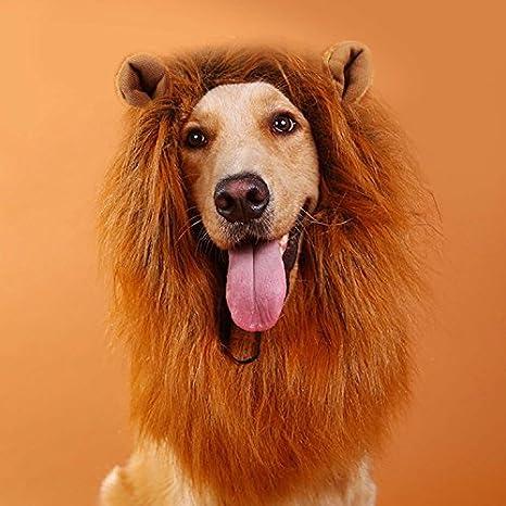 BEETEST Peluca de pelo de melena de León para Pet perro disfraz Halloween Party Dress up: Amazon.es: Juguetes y juegos