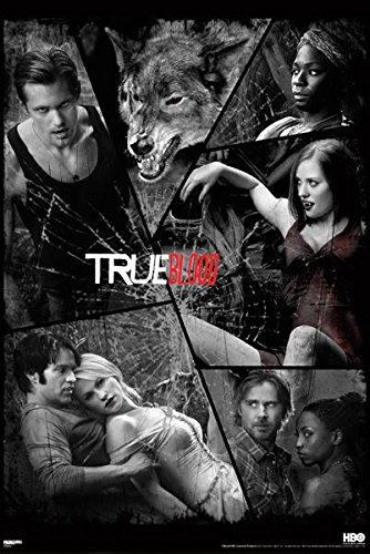 True Blood Merlottes Bar - 9