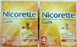 Nicorette 4 Mg Gum, Fruit Chill - 160 Count, 2 Pack