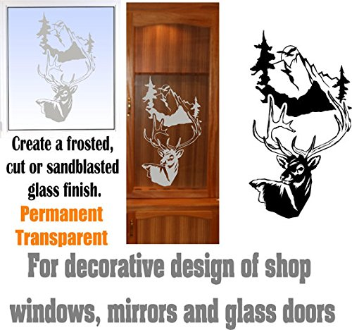 gun cabinet with etched glass - 5