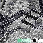 prowithlin-Pedali-per-mountain-bike-resistenti-in-lega-di-alluminio-ultraleggera-resistenti-allacqua-e-alla-polvere-pedali-per-bici-da-corsa-con-doppia-vite-DU-916