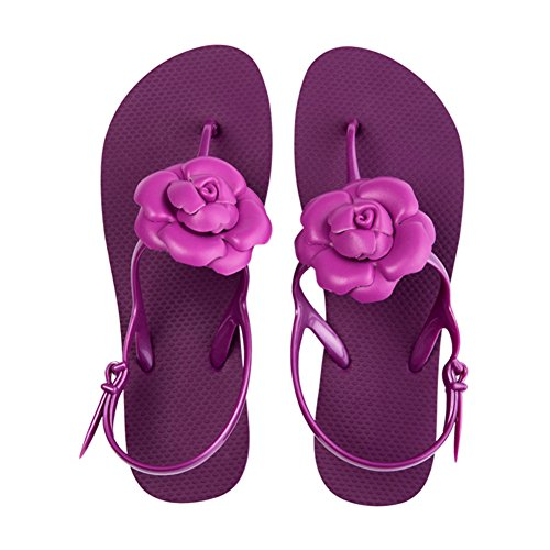 Colors Summer 235 US6 Slippers 4 7CM Beach Purple PENGFEI 5 Female EU37 Color Size Height Wild Loafer Heel UK5 Purple Sandals 1 7SgqRB