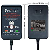 Suuwer 1.25A Automatic Trickle Battery Charger 6V