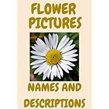 Flowers pictures: flowers, names, types and descriptions. Book One.
