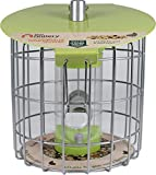 The Nuttery NC005 Roundhaus Compact Seed Feeder